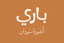 تحميل رواية باري أحمد إبراهيم عيسى