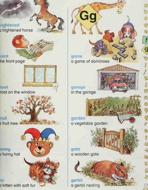 My Oxford Picture Word Book PDF for FREE