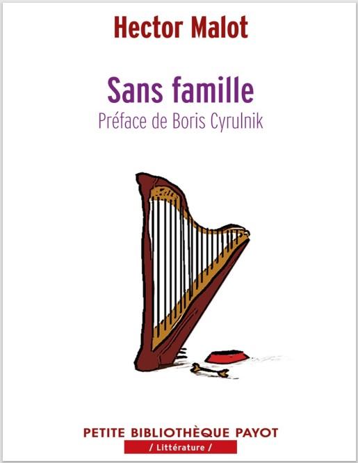 le roman sans famille pdf